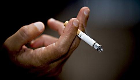 Закон о мерах табачных изделий сенатор сигареты купить тюмень